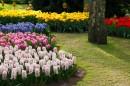 Zahrada v březnu