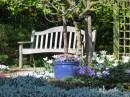 Jak navrhnout zahradu?