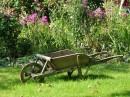 Jaro je tu a zahrada se hlásí o pozornost